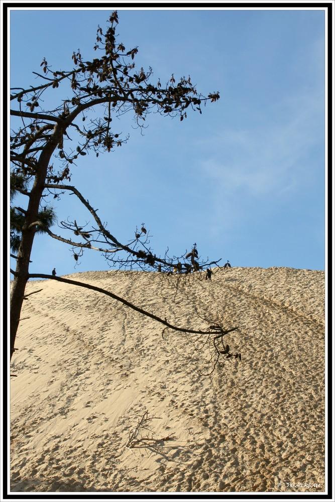 Quelle est haute cette dune !!!