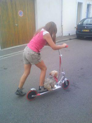 quelle vie de chien !!!!