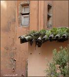 Quelles tuiles! / Altstadtromantik