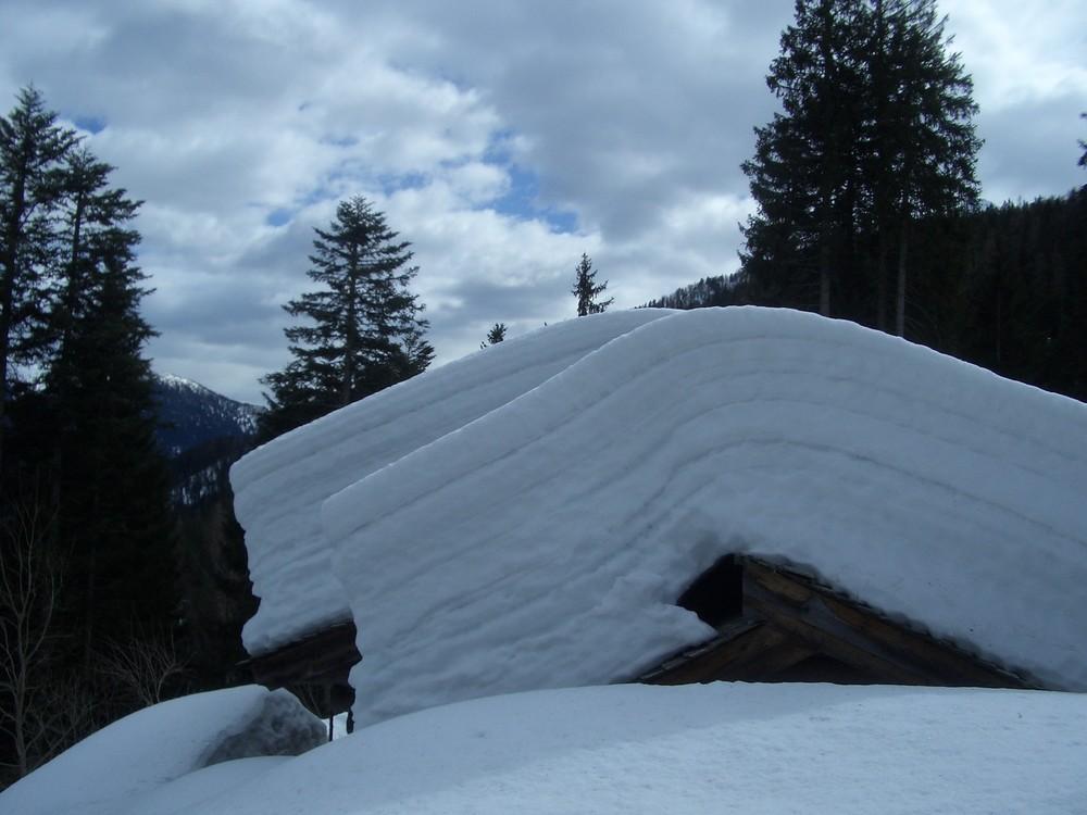 Quest'anno poca neve!!!!