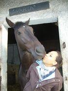 qui a dit que les chevaux n'avaient pas de sentiments?