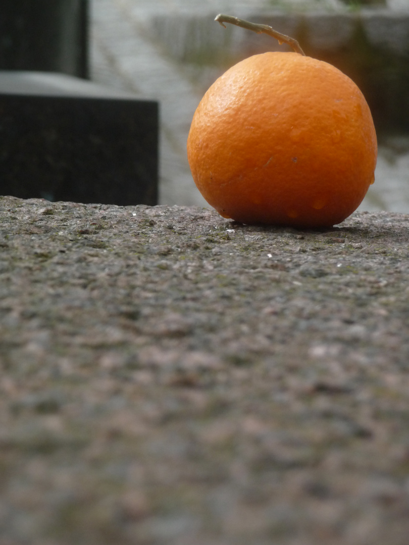 Qui a volé l'orange ?