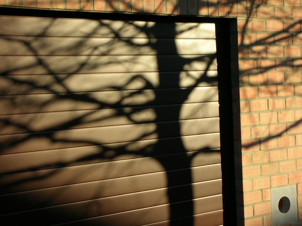 Qui es-tu, pour ainsi faire de l'ombre au garage... de mon voisin ?