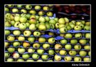 Quién quiere manzanas?