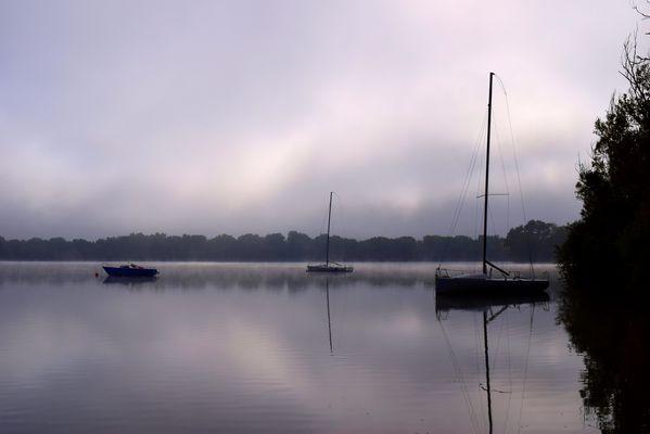 Quiétude matinale sur le lac