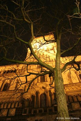 Quirinus Münster bei Nacht