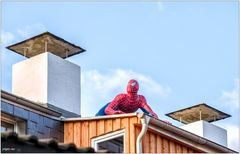 Quo vadis, Spiderman?