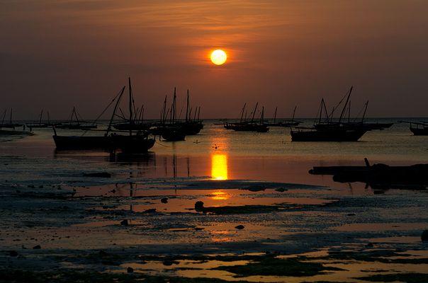 Quo vadis, Zanzibar?