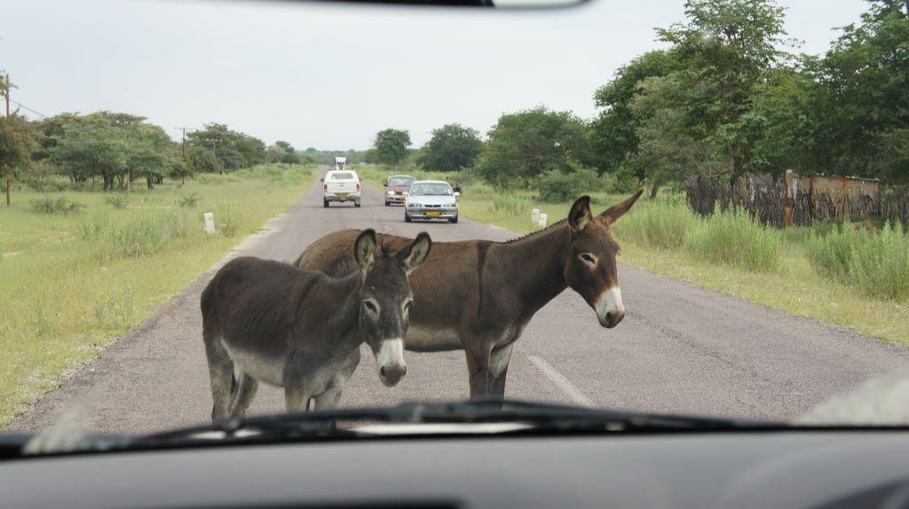 R) Verkehrsberuhigung