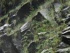 Rabacal 2 - Madeira