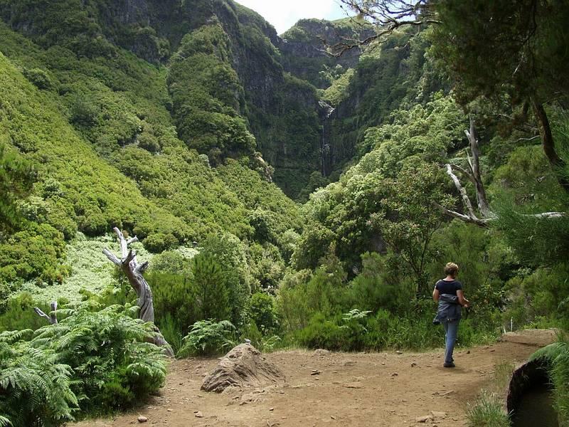 Rabacal 5 - Madeira
