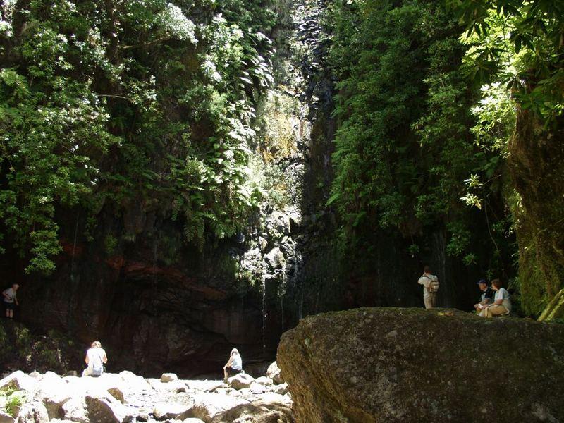 Rabacal 6 - Madeira