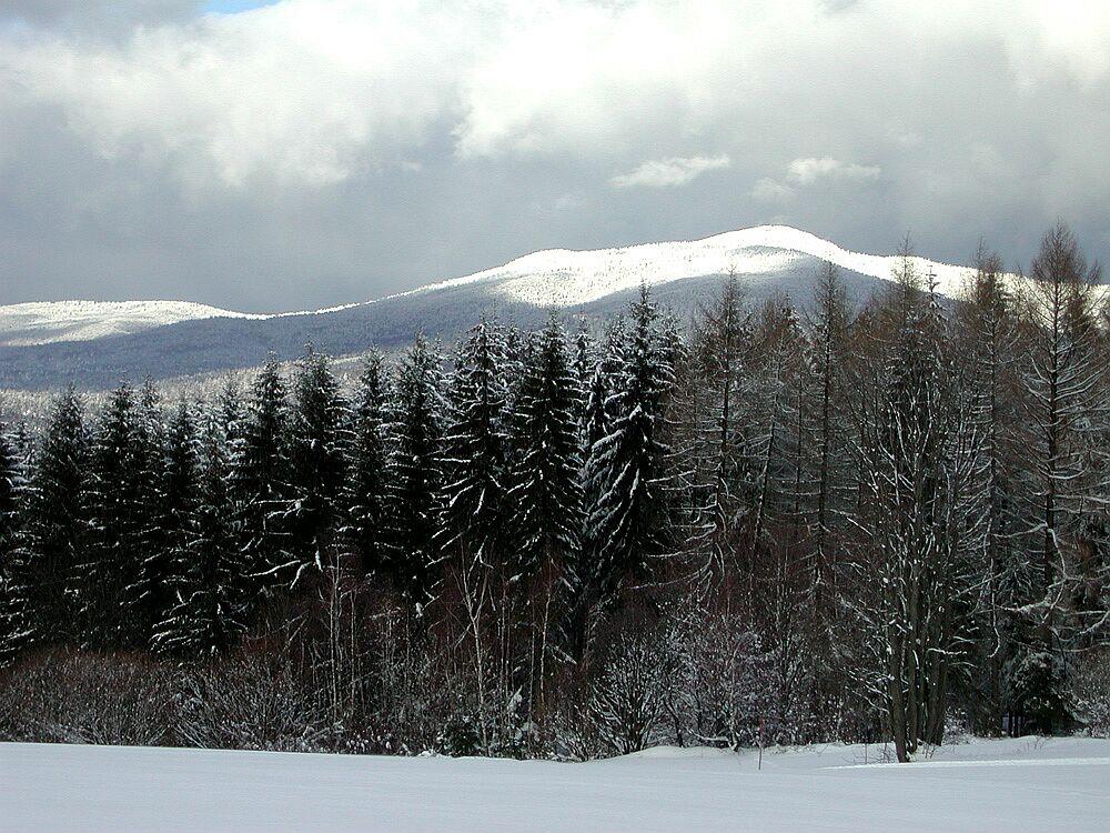 Rachel - Winter im Bayerischen Wald