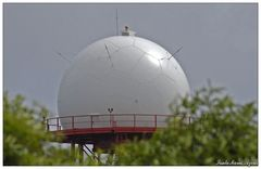 Radarkuppel auf dem Pico Alto (Santa Maria, Azoren)
