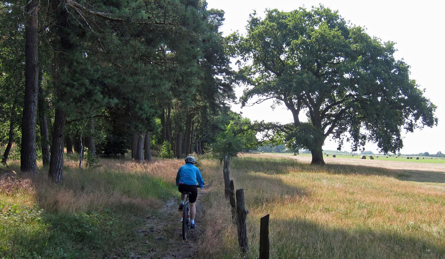 Radeln im Naturpark