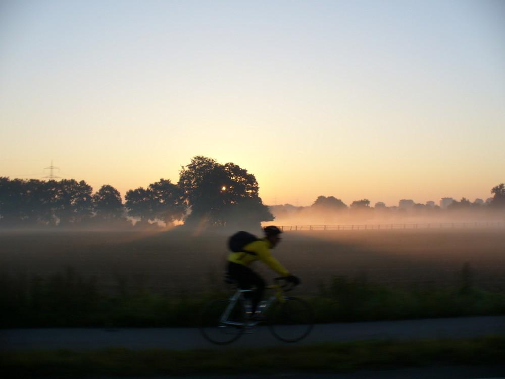 Radfahrer am Morgen