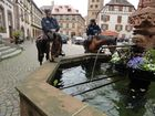 Radltour im Elsass !!! 4