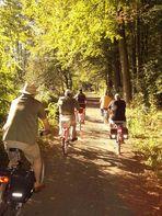 Radwandern im Herbst