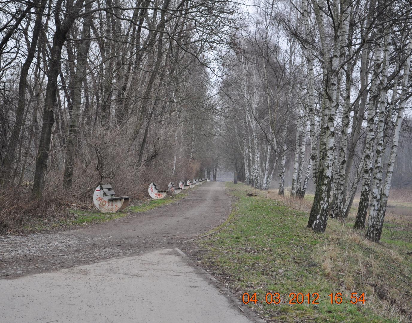 Radweg an der Mulde