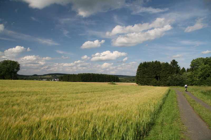 Radweg im Westerwald