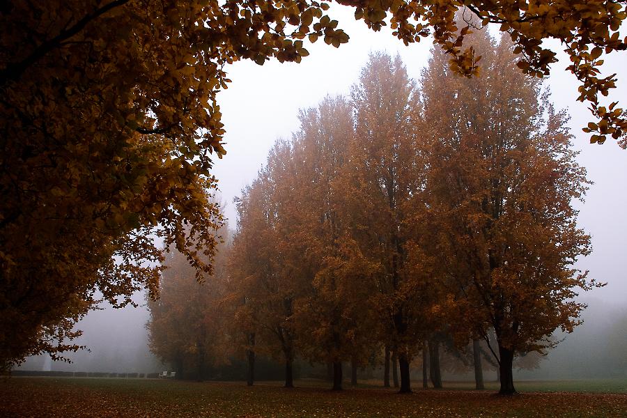 *Raffelbergpark*