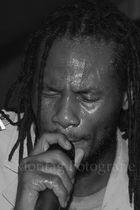 Raggabund by Reggae in wulf