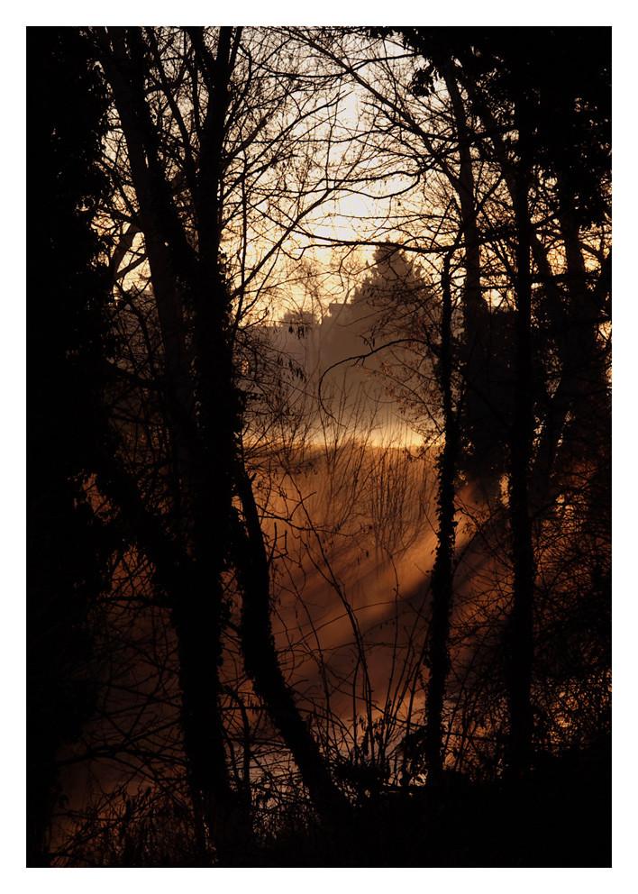 Raggi nella nebbia