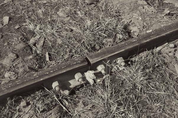 Rail........