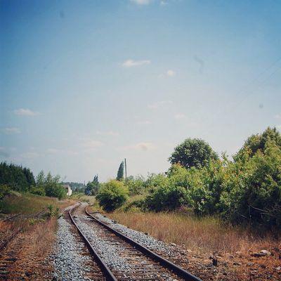 Rail de train