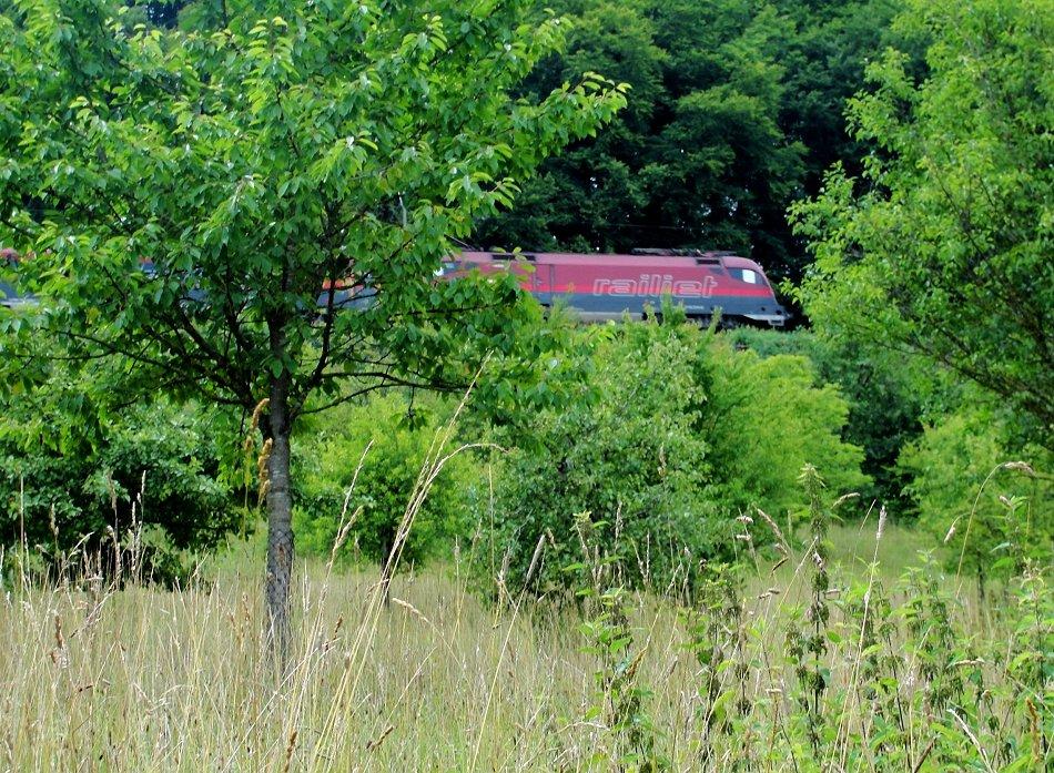 Railjet im wilden Streu-Obstgarten