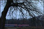 Railjet mit Baum