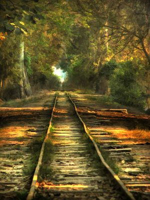 Railway track at Changa Manga Forest