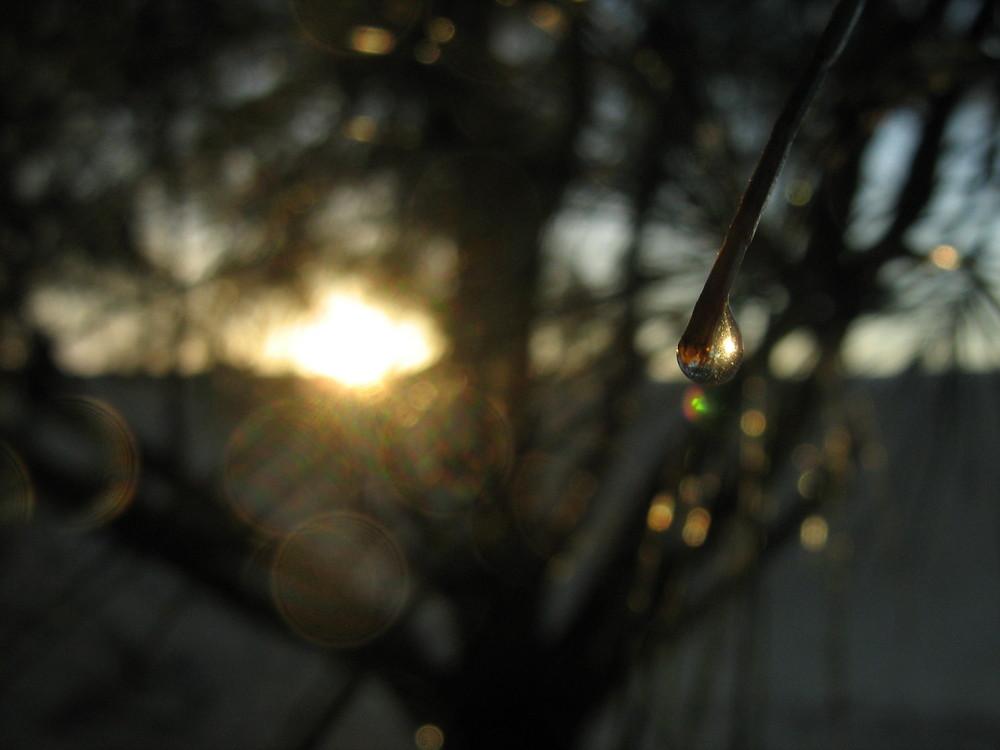 Rain and Sun (Chuva e Sol)