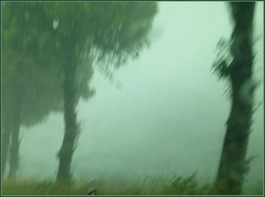 Rain-Painting #1