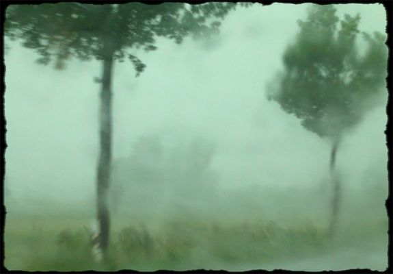 Rain-Painting #2