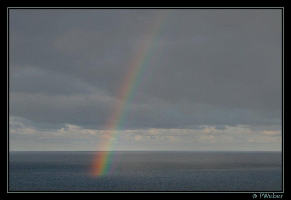 ***Rainbow***