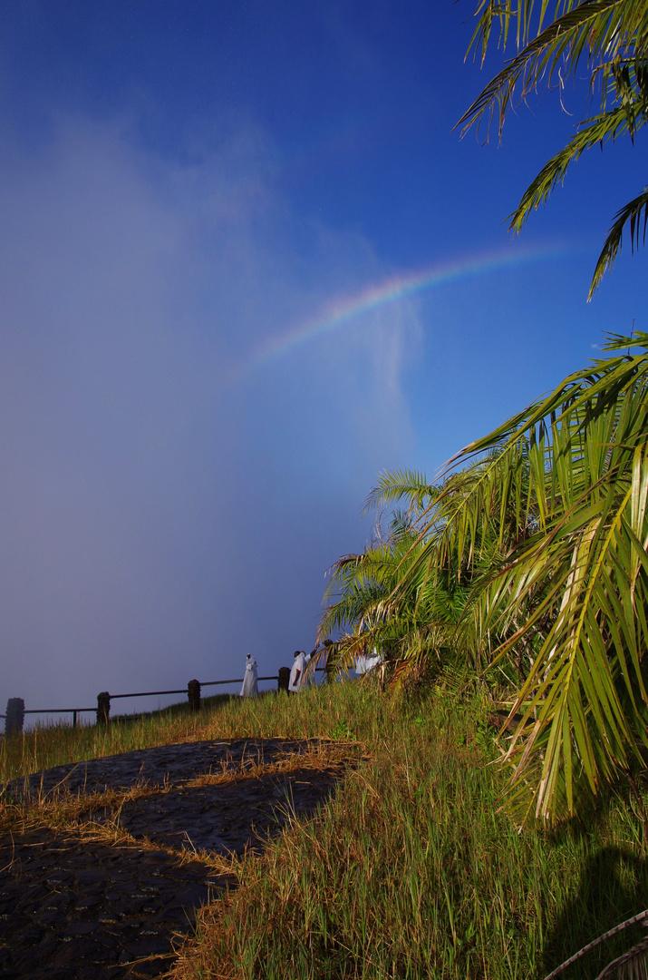Rainbow on the falls