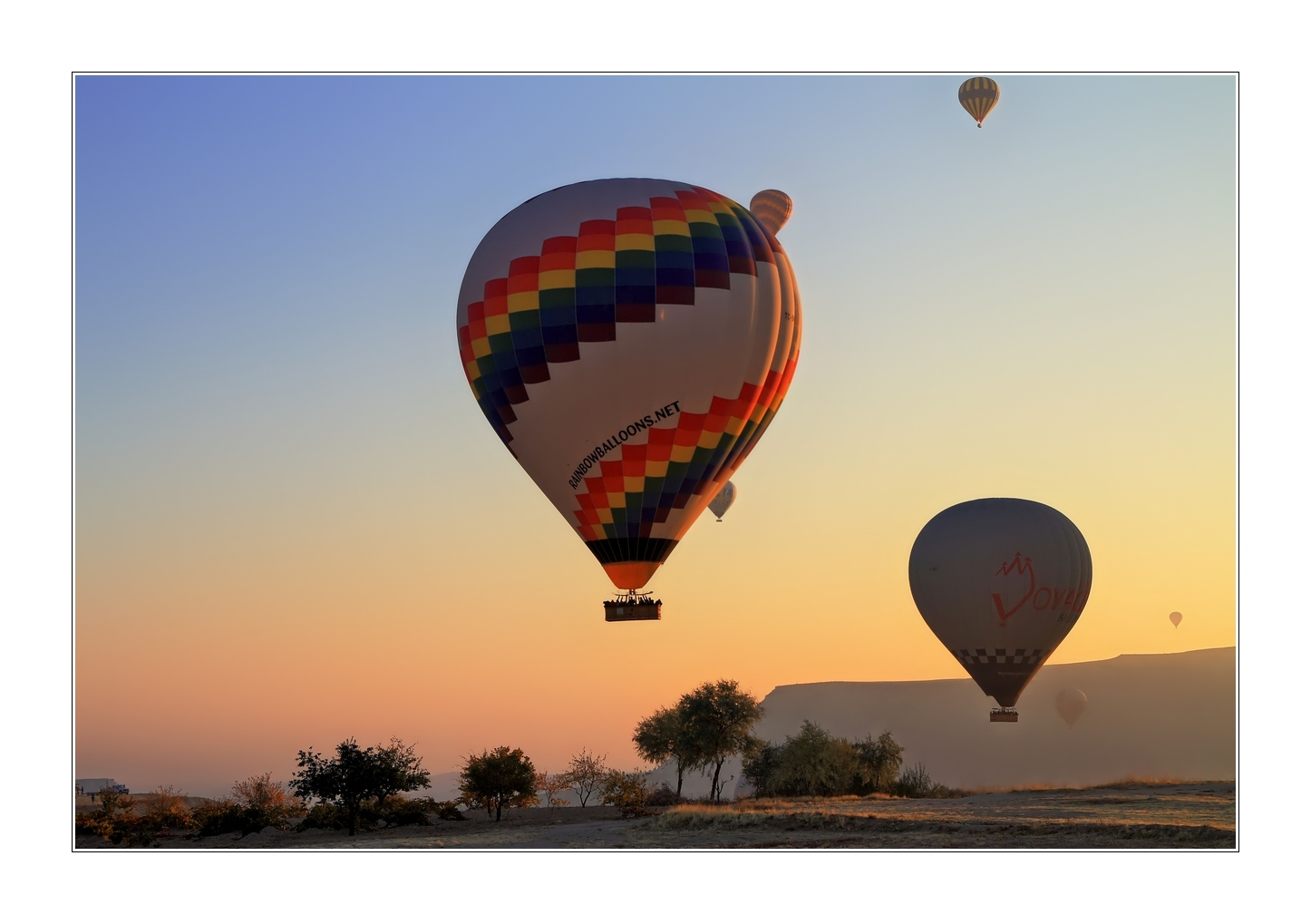 Rainbowballoons