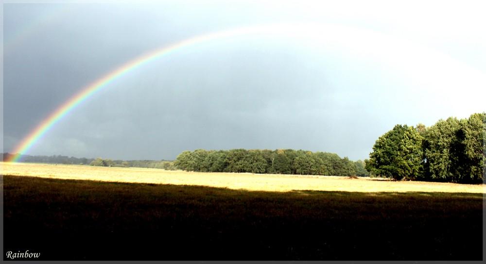 Rainbowcolor