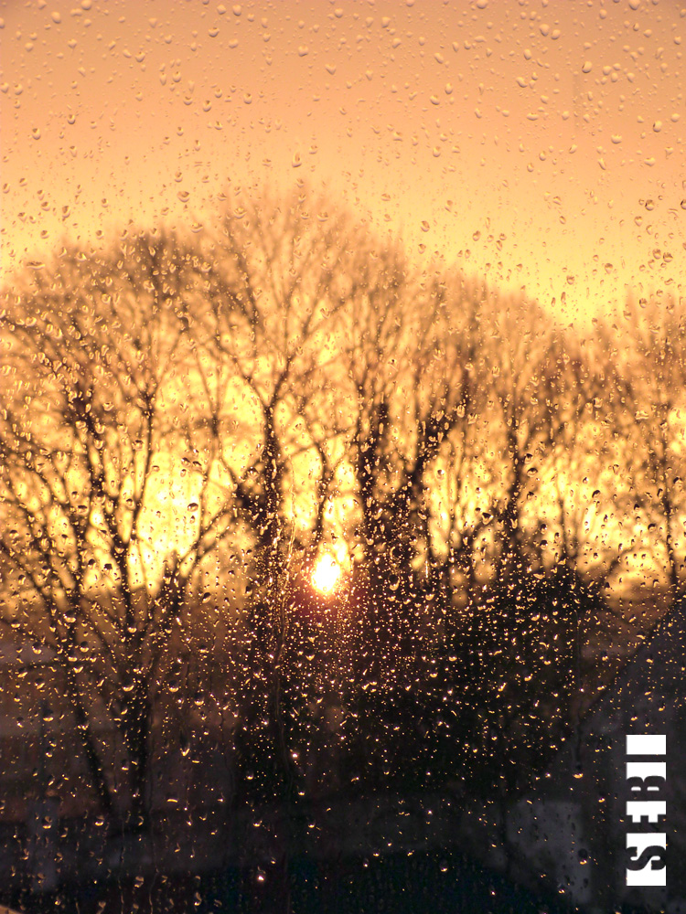 Raindrops are falling on my window