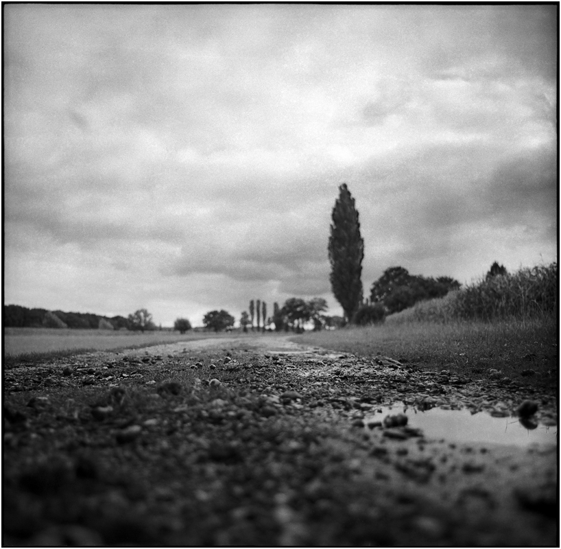 rainy days II