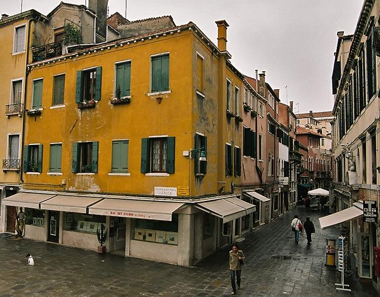 Rainy street (with little dog)