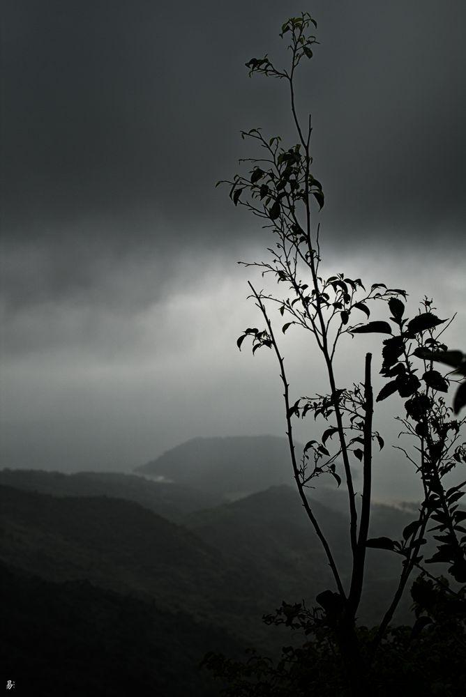 rainy.day - 'hai van pass'