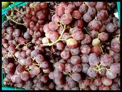 Raisins. Grapes. Uve.