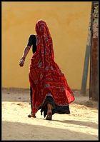 Rajasthani 4