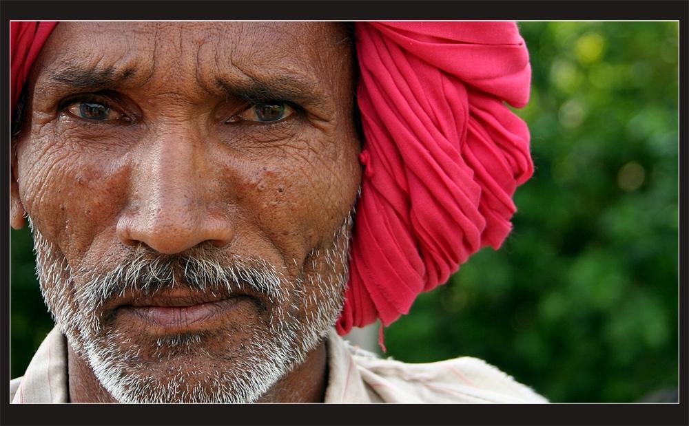 Rajasthani Portrait #9