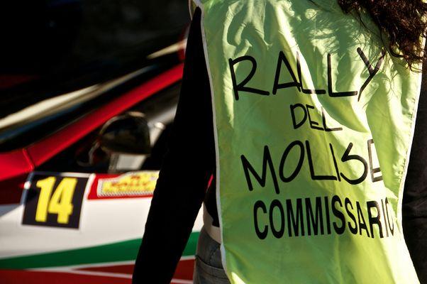Rally del Molise 2013 - 1