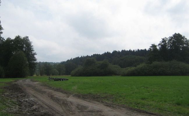 Rallyesport (213)