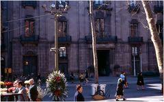 Rambla de las flores, Barcelona