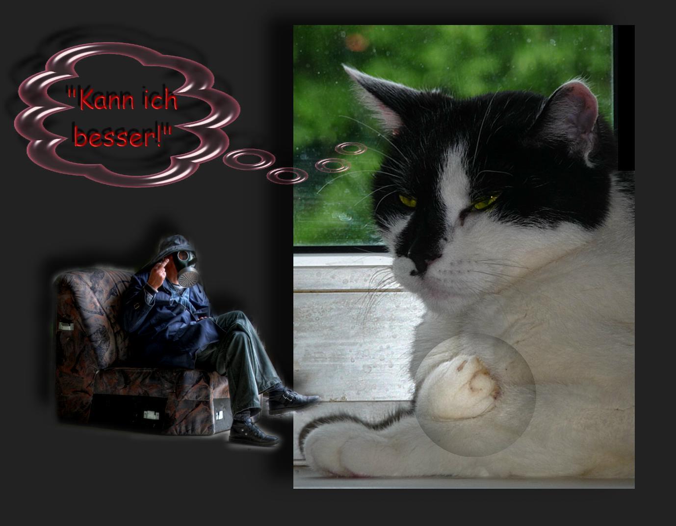 Ramses erklärt sich die Welt LXXXIV: Ich kanns mit Kralle!